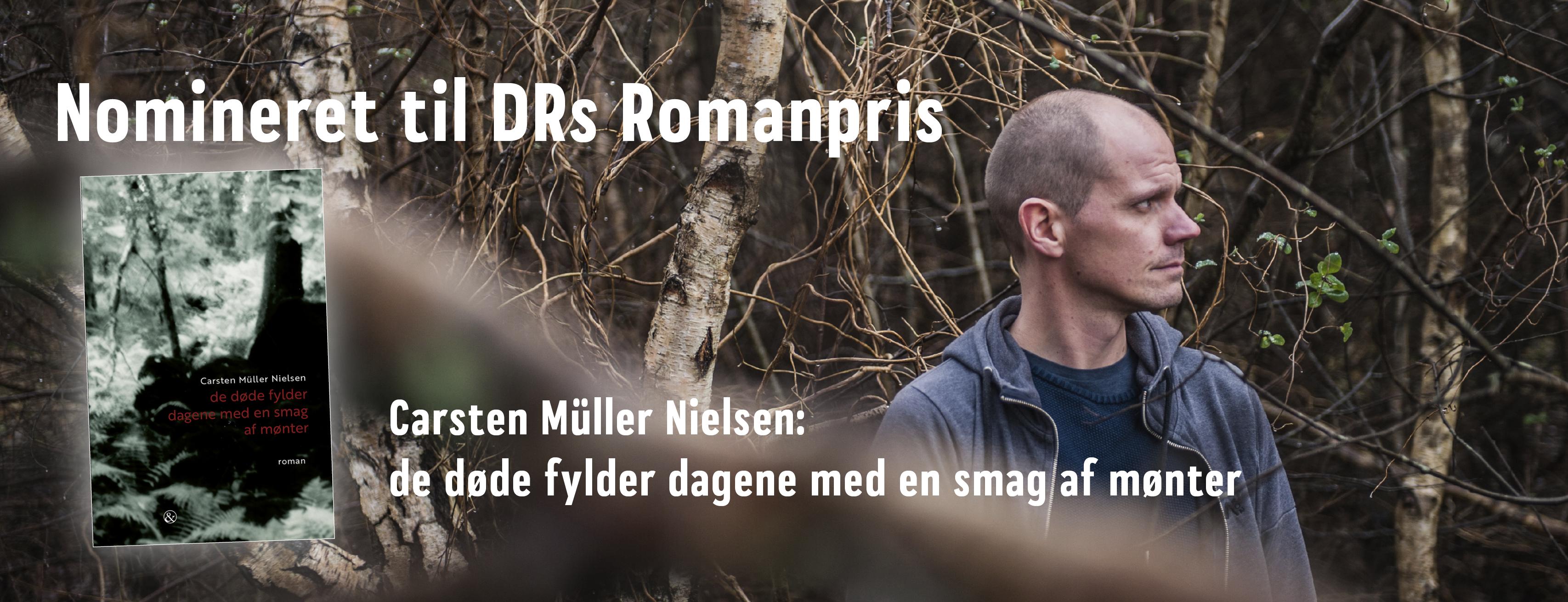 DRs Romanpris